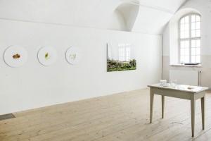 Julia Weckman ripustuskuva1_Galleria Rantakasarmi 2015